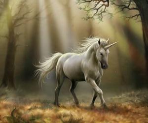unicorn, fantasy, and autumn image