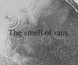 black and white, rain, and beauty image