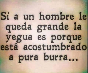 humor, frases, and man image