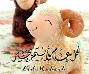 كل عام وانتم بخير and عيد الاضحى image