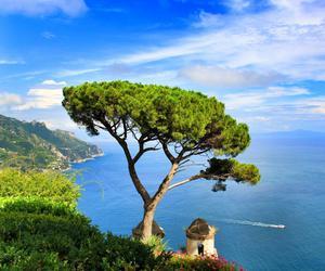 freedom, italy, and sea image