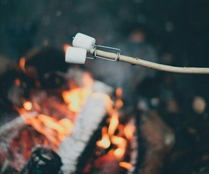 fire, marshmallow, and vintage image