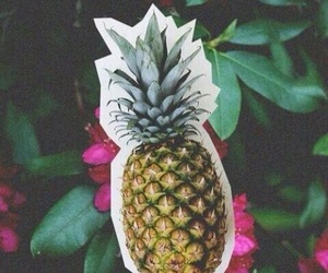 pineapple, flowers, and wallpaper image