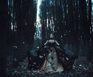dark, forest, and gothic image