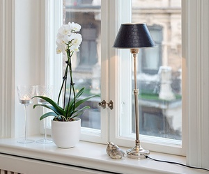 white, flowers, and window image