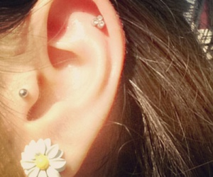 daisy, ear, and piercing image
