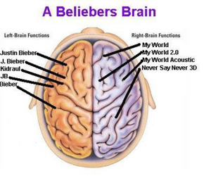 brain, justin bieber, and bieber image