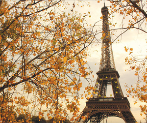 amazing, fall, and france image