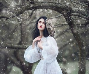 girl, owl, and winter image