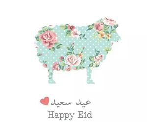 2015, mubarak, and eid-ul-adha image