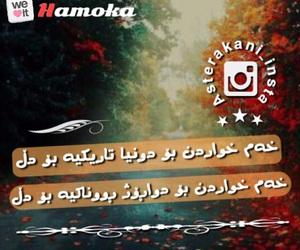 texta, kurdistani, and m-styler image