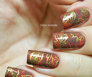 fall, leaves, and nail image