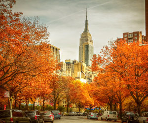 autumn, new york, and city image