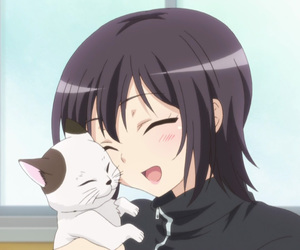 anime, haganai, and cat image