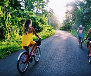 bike and tumblr image