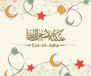 ceremony, joyful, and eid ul adha image