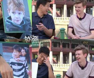 ki hong lee, newt, and the maze runner image