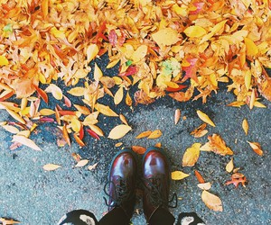 fall, autumn, and shoes image