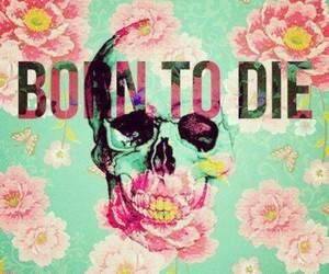 born to die, flowers, and die image