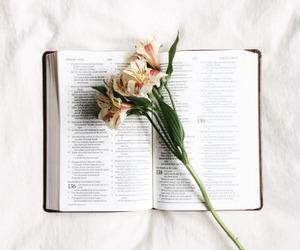 art, bible, and study image