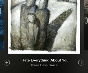 hate, you, and three days grace image