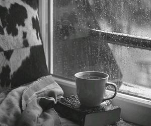 rain, book, and coffee image