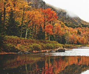 autumn, hipster, and pale image