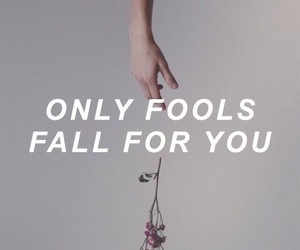 fools, Lyrics, and music video image