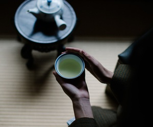 drink, green tea, and inspiration image