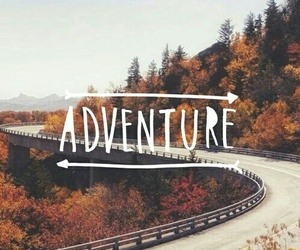 adventure, autumn, and fall image