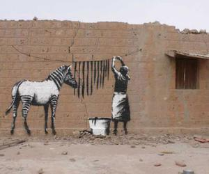 zebra, art, and BANKSY image