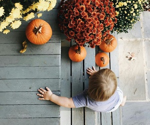 autumn, baby, and pumpkins image