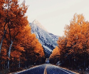 autumn, fall, and mountains image