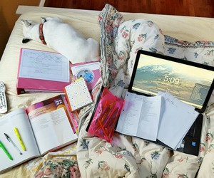 notebook, school, and studying image