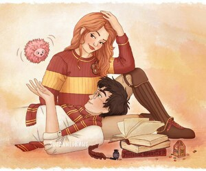 harry potter, hinny, and book image