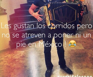 acordeon, frase, and mexico image