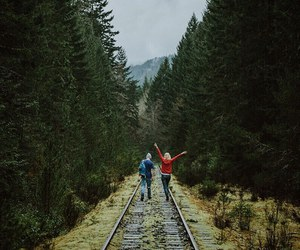 adventure, autumn, and nature image