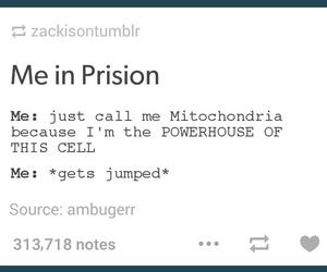 funny, tumblr, and mitochondria image