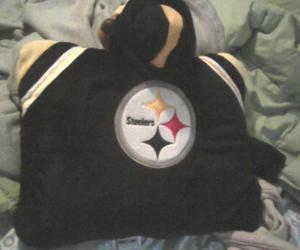 steelers and pillow pet image