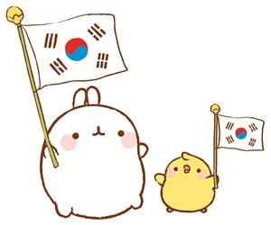 Chicken, kawaii, and korea image