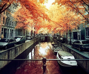 autumn, amsterdam, and fall image