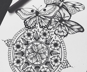 drawing, butterfly, and art image