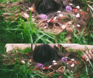 flower, shooting, and foret image