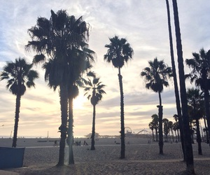 beach, los angeles, and palmtrees image