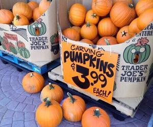 autumn, fashion, and pumpkin image