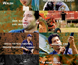 the walking dead and shane walsh image