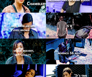 the walking dead, twd, and tara chambler image