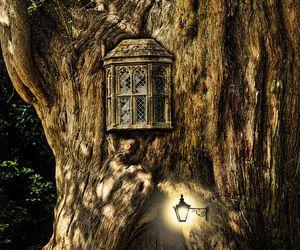 fairy, fantasy, and tree image