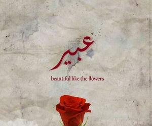yasamin, عبير, and اسماء بنات image