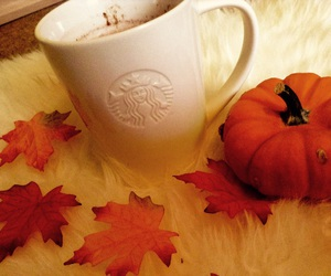 fall, leaves, and starbucks image